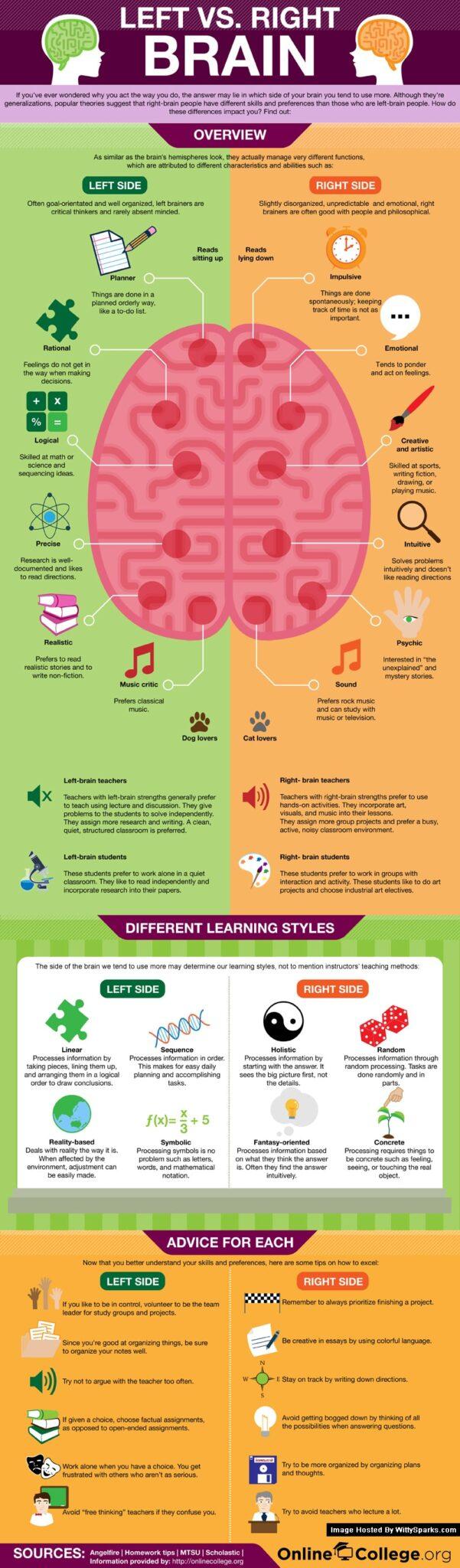 Left Brain vs. Right Brain Learners
