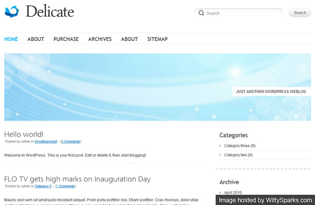 Delicate is a clean, minimalistic free WordPress theme with typography