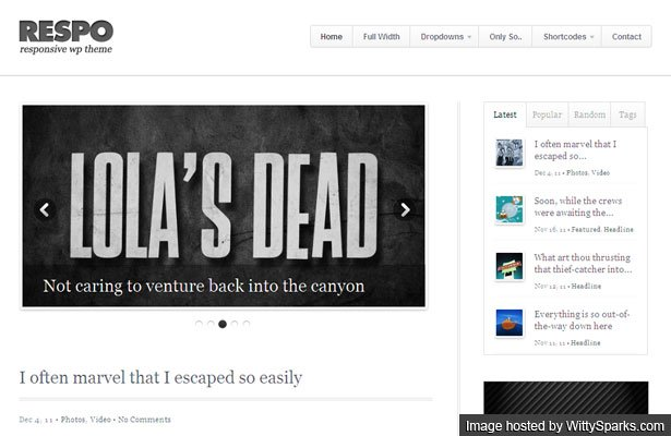 Respo, Free and fully responsive WordPress theme