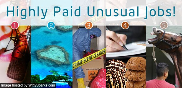 Highly paid - 5 most unusual jobs in this world
