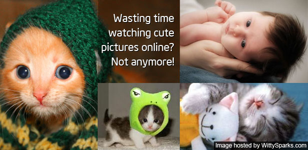 Watching Cute Pictures Online? - Not Anymore!