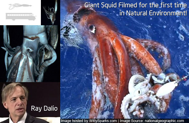 Giant Squid Filmed in the Depths for First Time