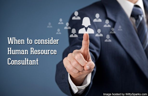 Human Resource Consultant
