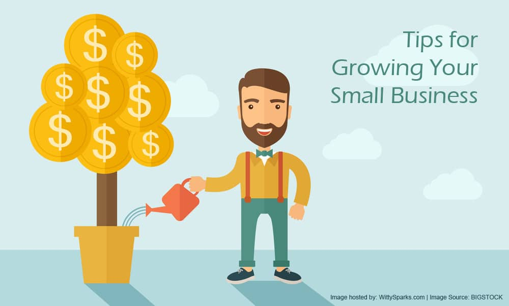 Tips to consider for growth of you Business