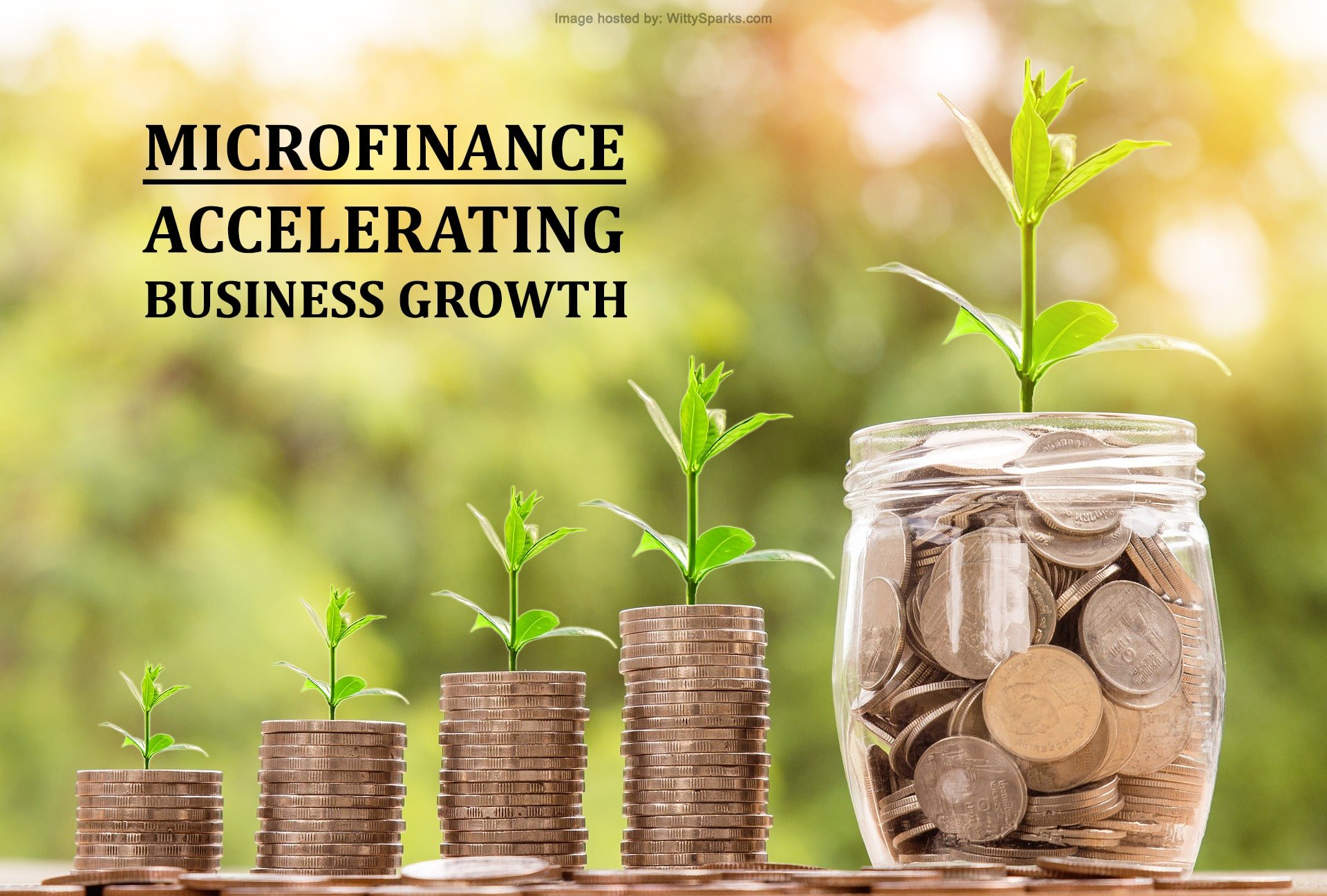 Microfinance: Accelerating Business Growth
