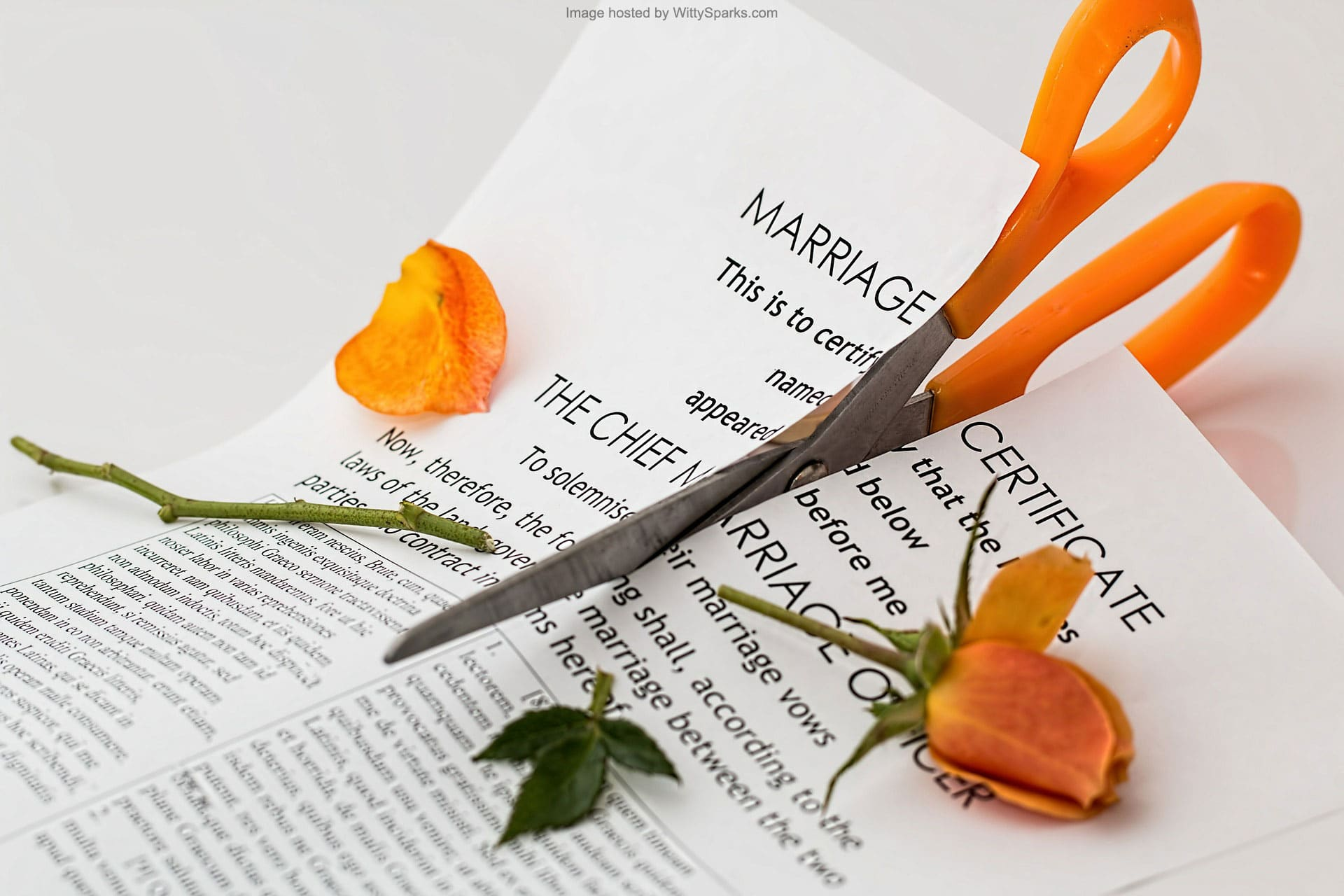 The effects of separation and divorce on a family