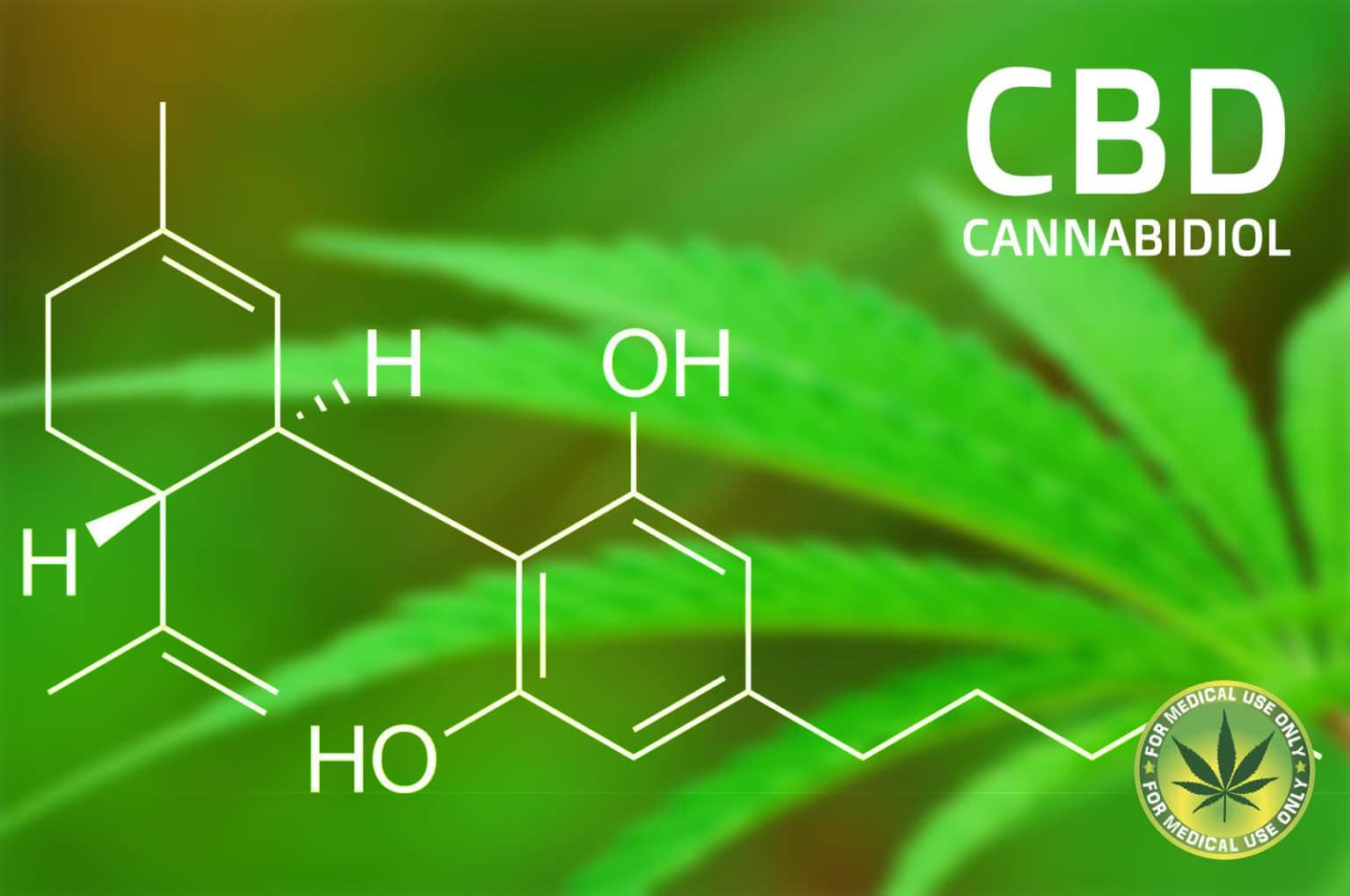 CBD Oil - Cannabidiol