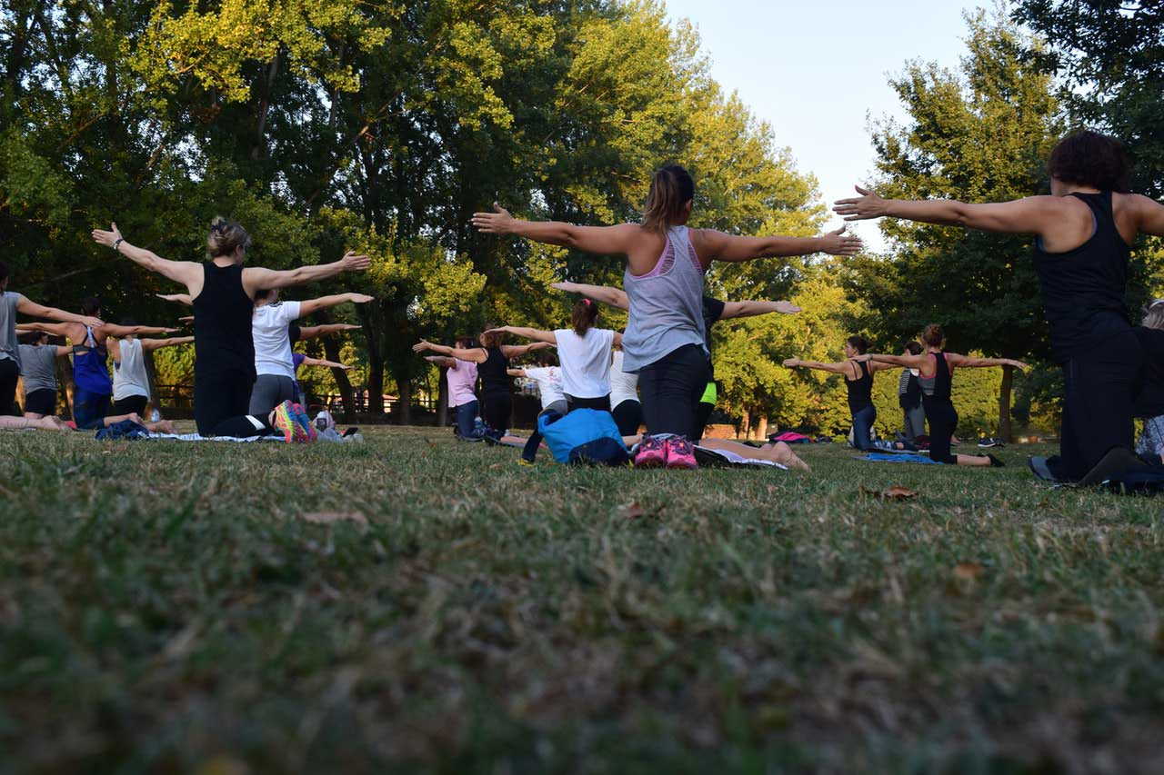 Women Performing Yoga on Green Grass Near Trees.
