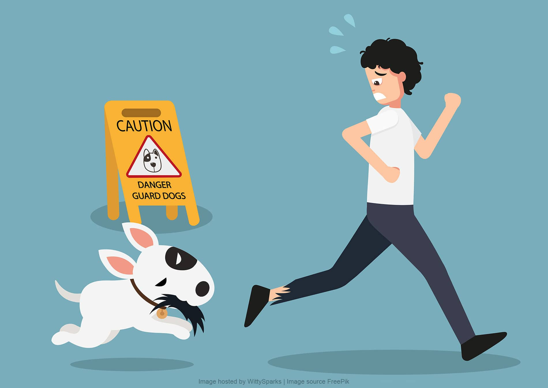 How to avoid a dog attacks