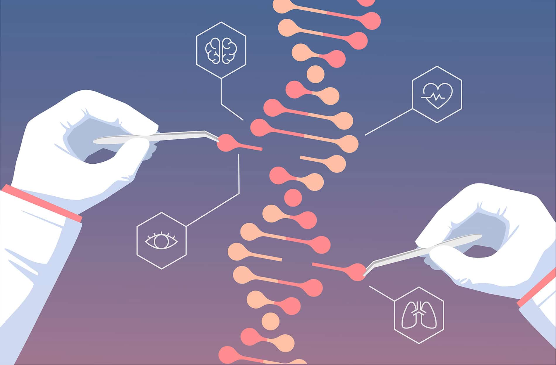 Genetic engineering and DNA Sequencing