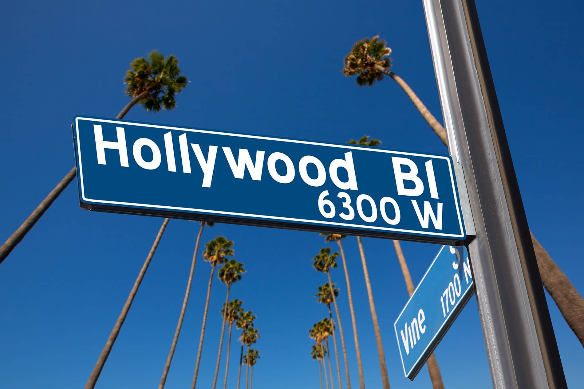 Things to do in hollywood boulevard
