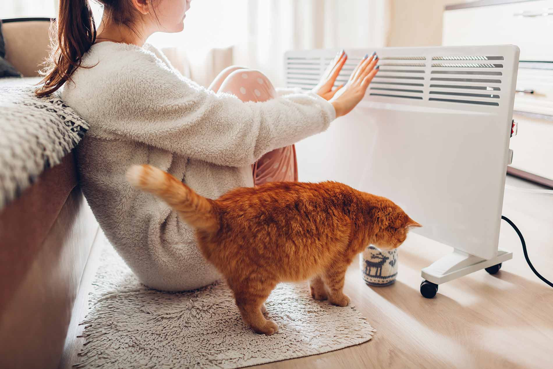 Using heater home winter woman warming her hands with cat heating season